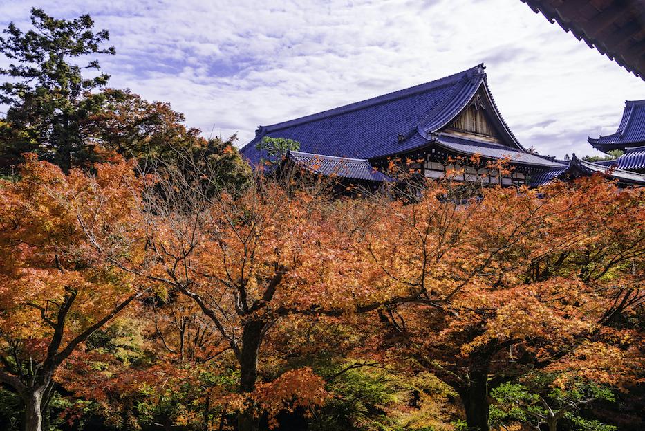 東福寺について