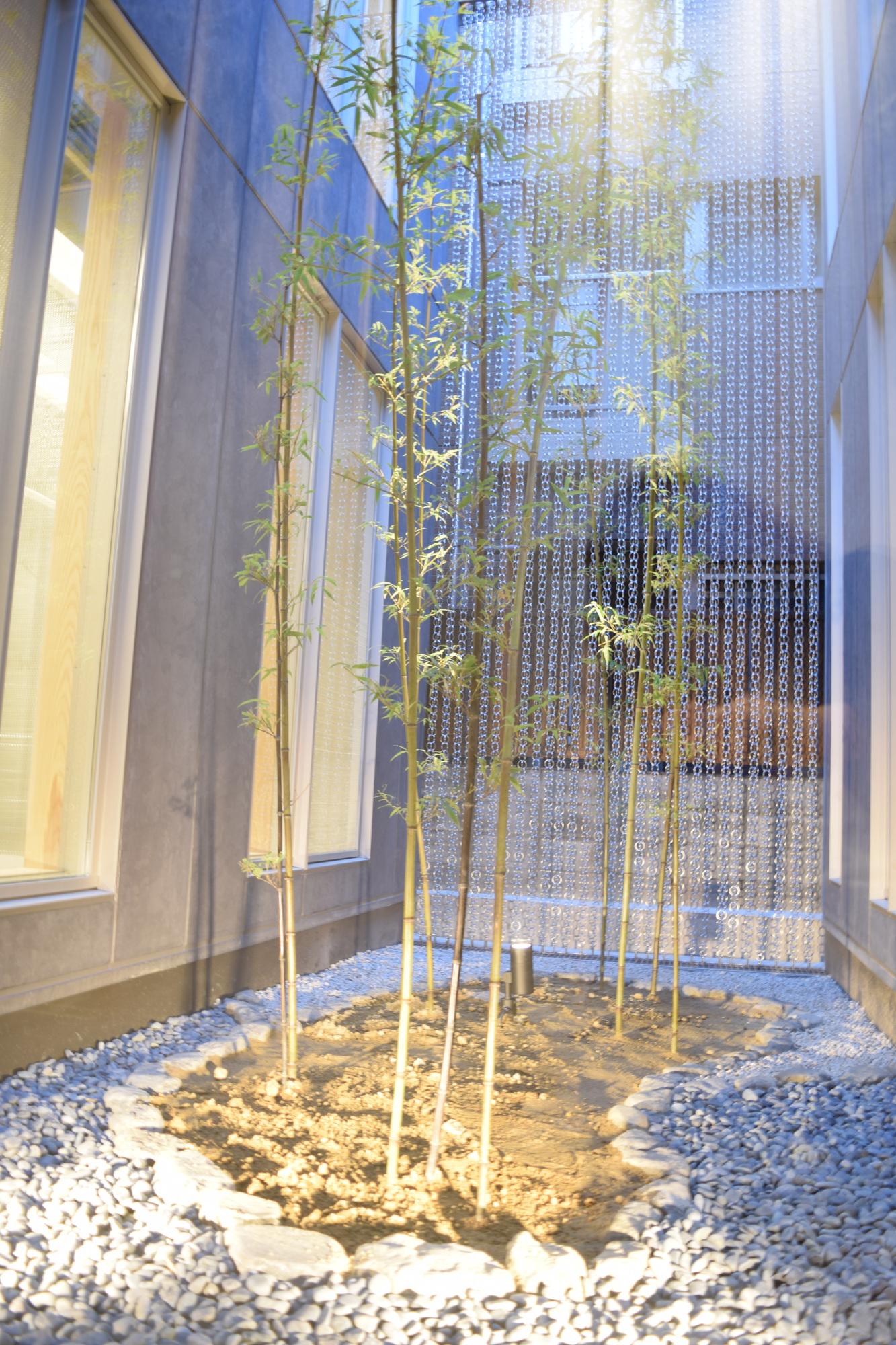 瓢斗,京都駅前本店,京都グルメ,京都,一軒家レストラン,中庭